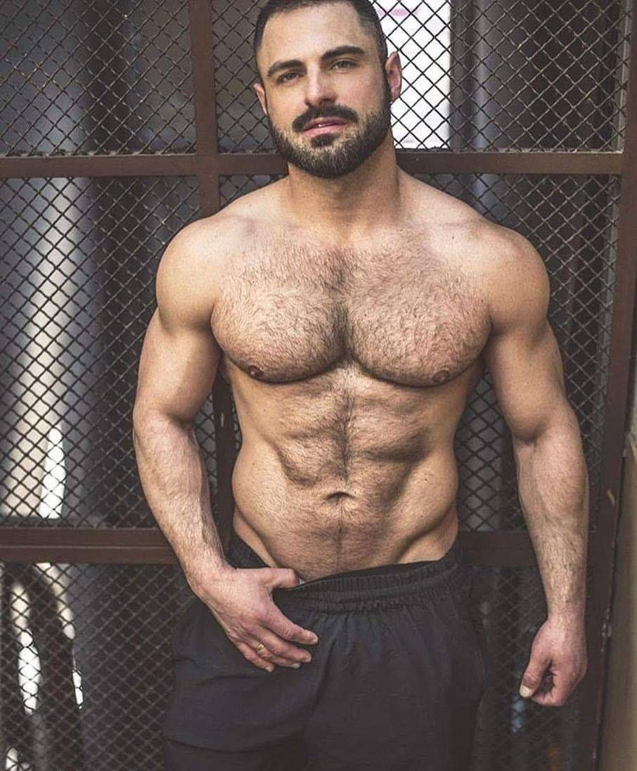 Hairy muscle gay